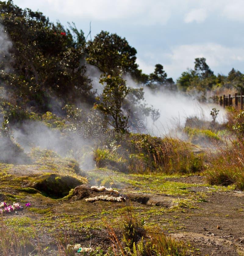 Volcano Vents na ilha grande fotografia de stock royalty free