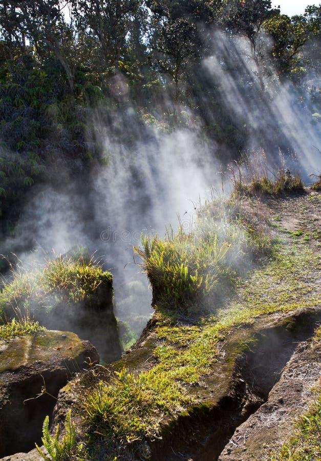 Volcano Vents na ilha grande imagens de stock