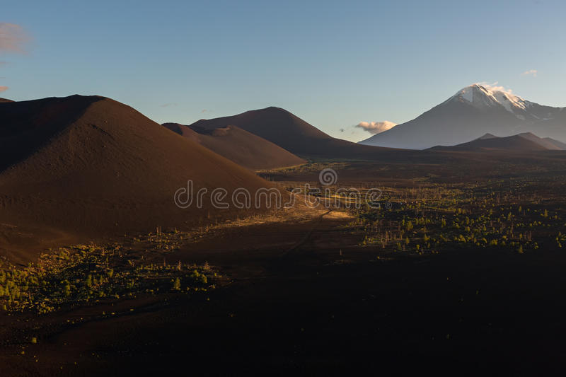 Volcanoes and Dead wood at dawn - consequence of catastrophic release of ash during the eruption of the volcano in 1975. Volcanoes and Dead wood at dawn stock photography
