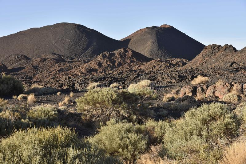 Black volcanoes and landscape with shrubs Tenerife Canary Islands royalty free stock image
