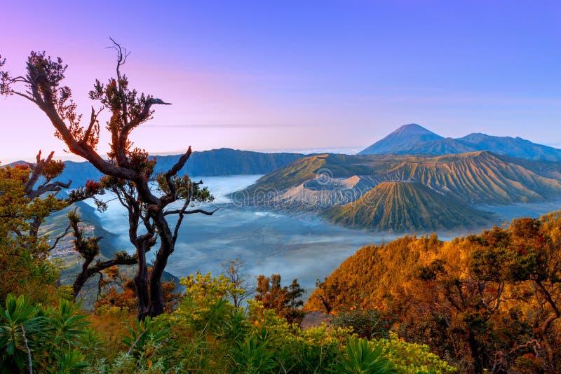 Volcanoes i den Bromo Tengger Semeru nationalparken på soluppgång java arkivfoton