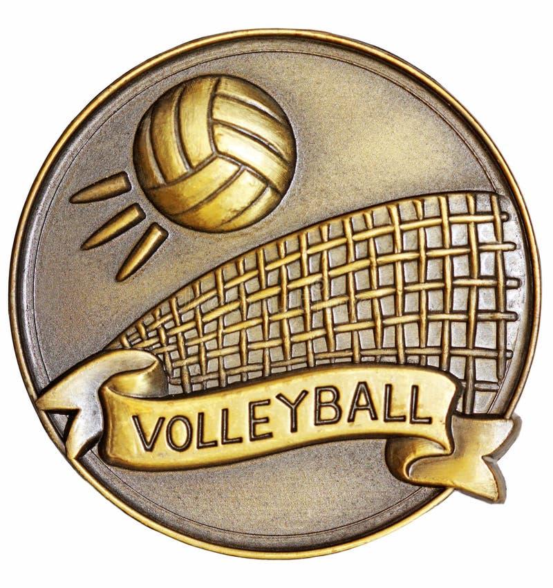 Voleibol fotografia de stock royalty free