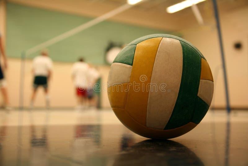 Voleibol imagen de archivo libre de regalías