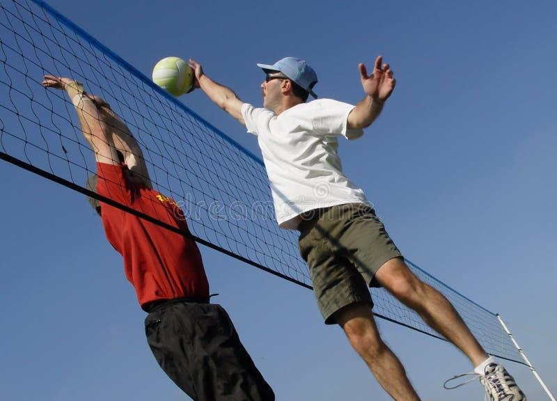 Voleibol imagem de stock