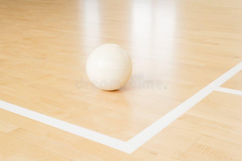 Voleibol branco no assoalho no gym imagens de stock