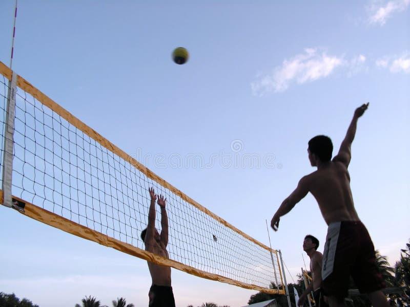 Voleibol no crepúsculo do por do sol fotos de stock royalty free