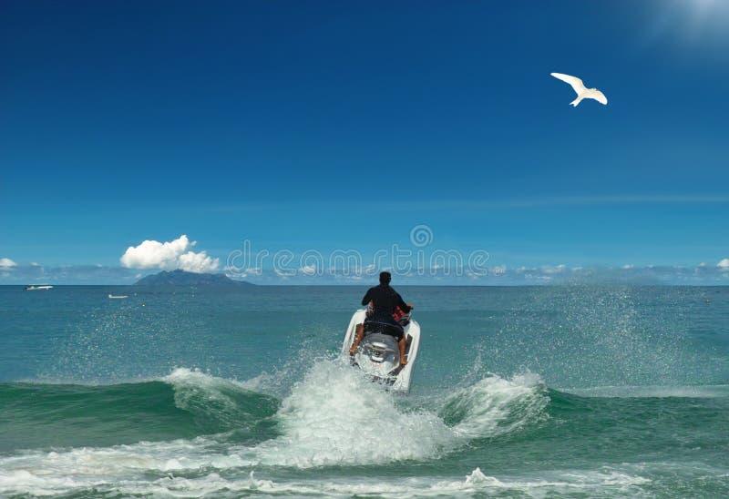 Voler au soleil. Ski et oiseau d'avion à réaction. photos stock