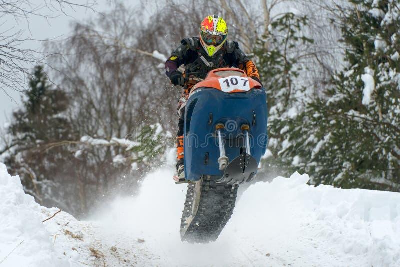 Voler dans la forêt d'hiver images libres de droits