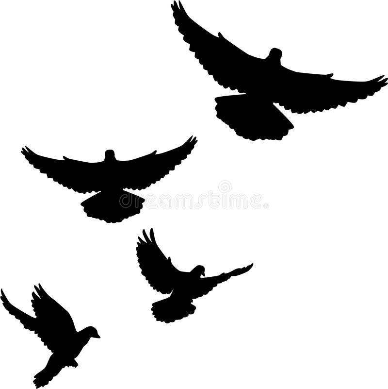 Voler de colombes d'essaim de colombe illustration stock