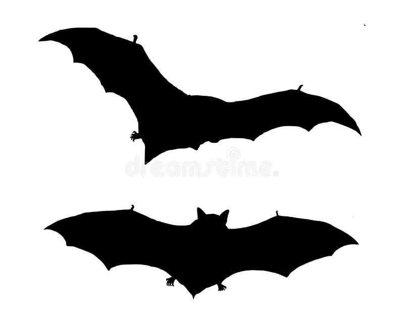 Voler de deux 'bat' illustration stock