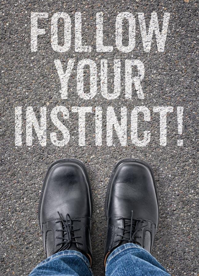 Volg uw instinct stock foto's