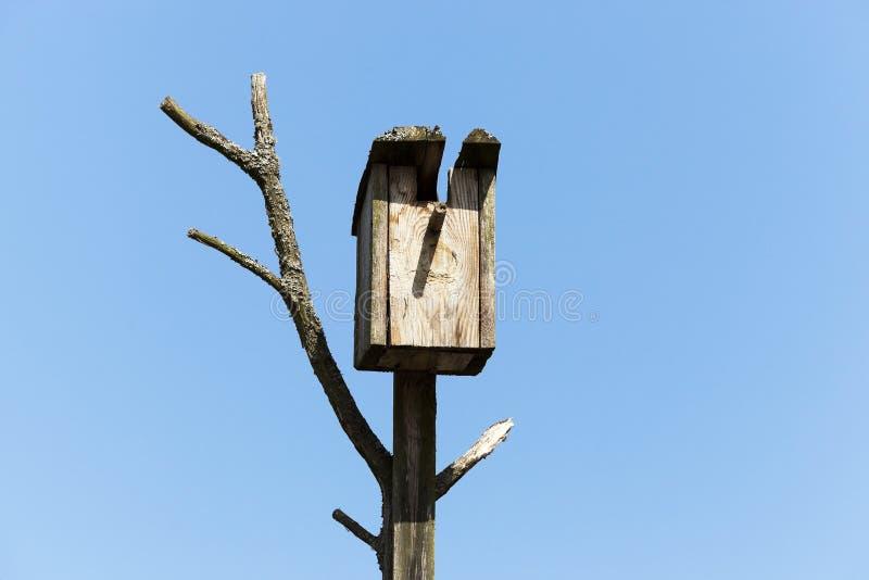 Volière d'un arbre image libre de droits