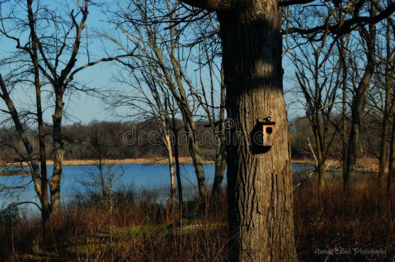 Volière dans la forêt images libres de droits
