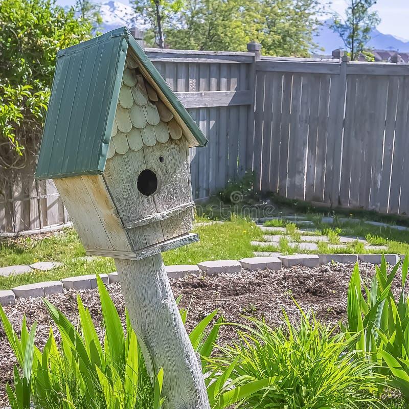 Volière en bois de place et plantes vertes vibrantes au jardin ensoleillé d'une maison photographie stock