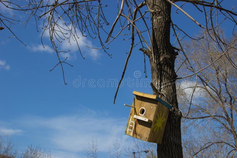 Volière En Bois Faite Maison Sur Un Tronc D'Arbre Contre Le Ciel