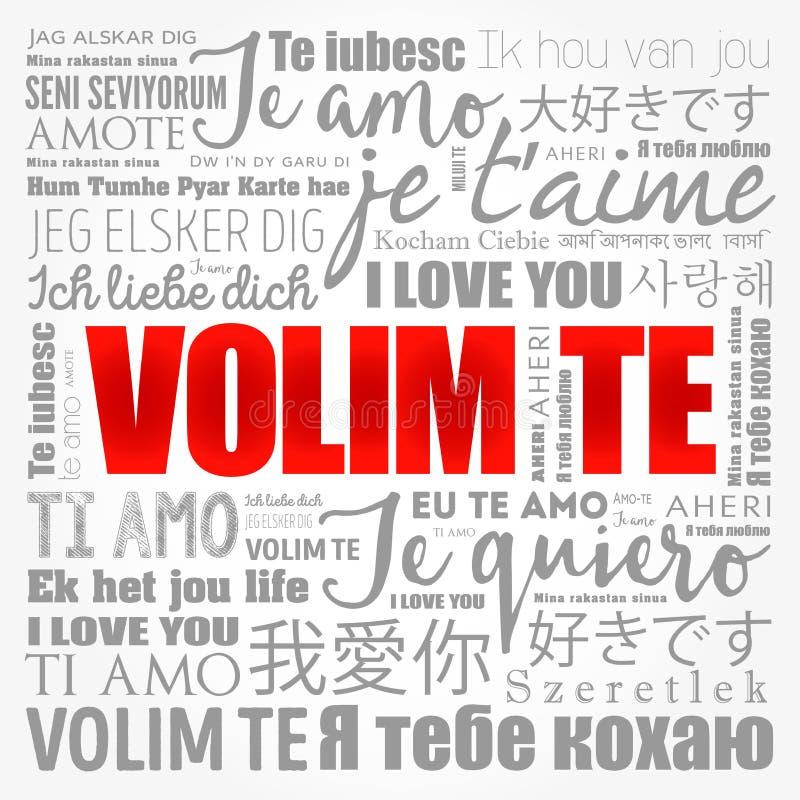 Auf serbisch liebe dich ich Wie sagt