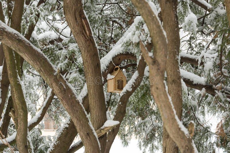 Voljär bland träden arkivbild