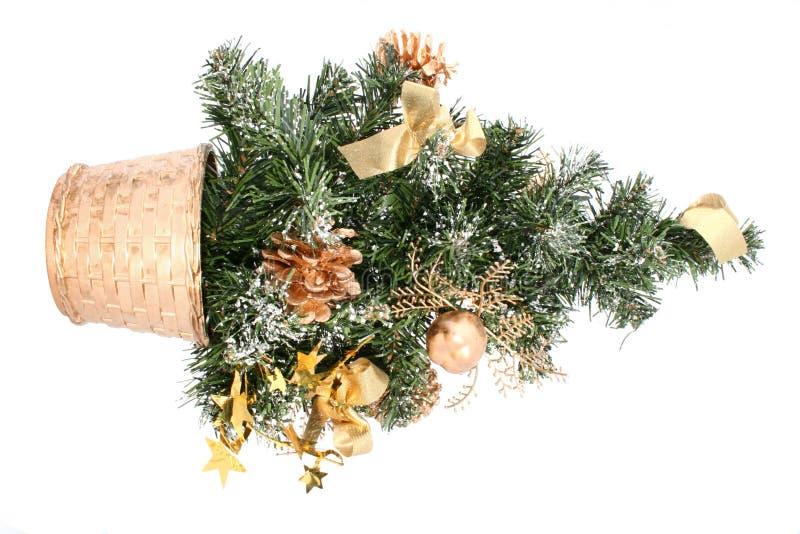 Volkomen geïsoleerdei kleine Kerstmisboom royalty-vrije stock afbeelding