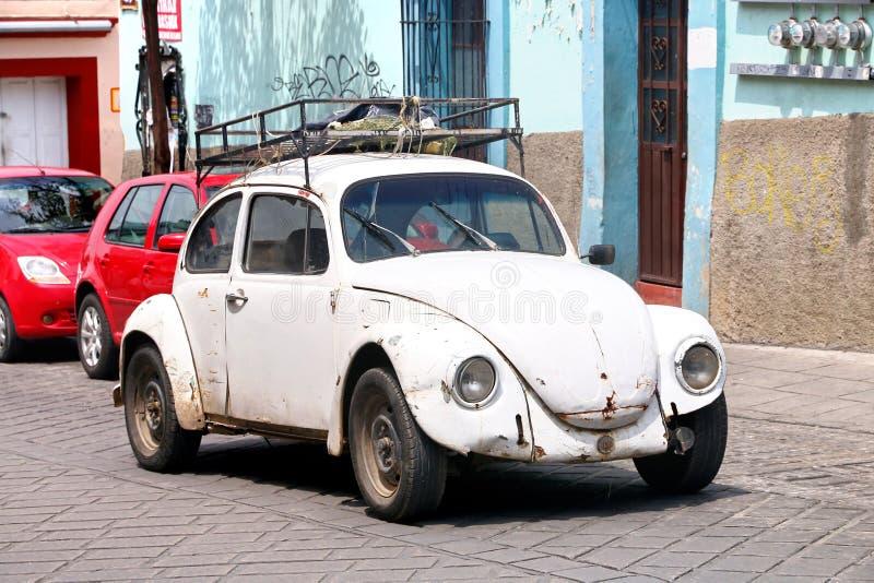 Volkswagen Beetle lizenzfreie stockfotografie