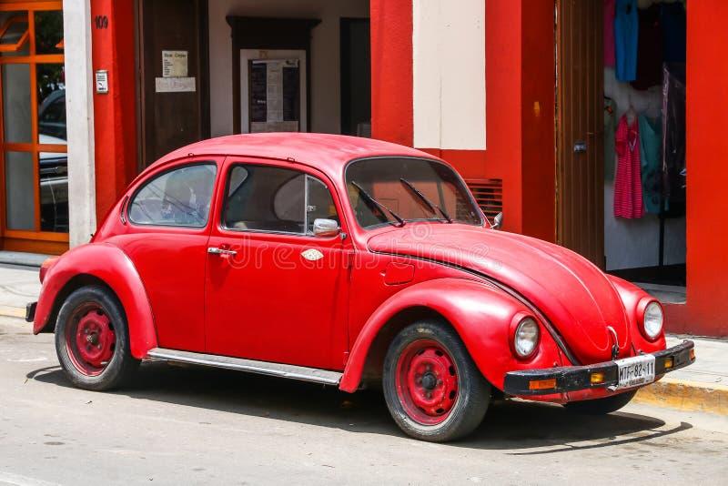 Volkswagen Beetle lizenzfreie stockfotos