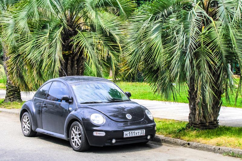 Volkswagen Beetle fotografie stock libere da diritti