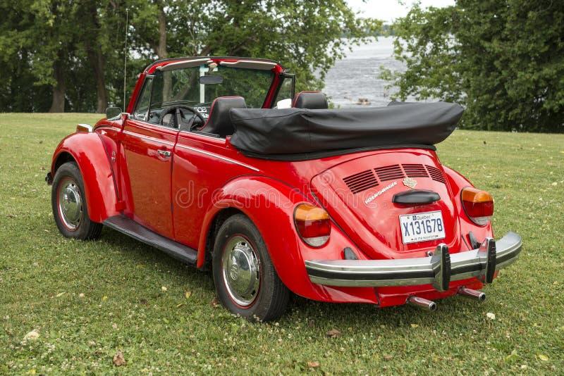 Volkswagen Beetle royalty-vrije stock foto