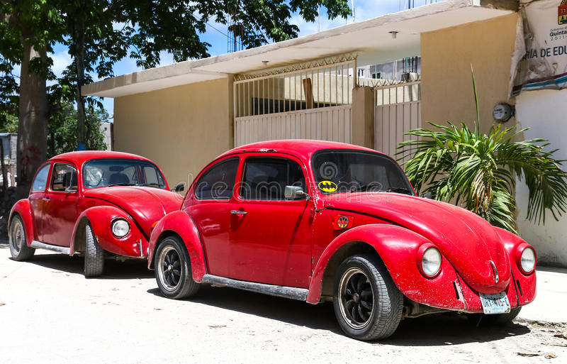 Volkswagen Beetle immagini stock libere da diritti
