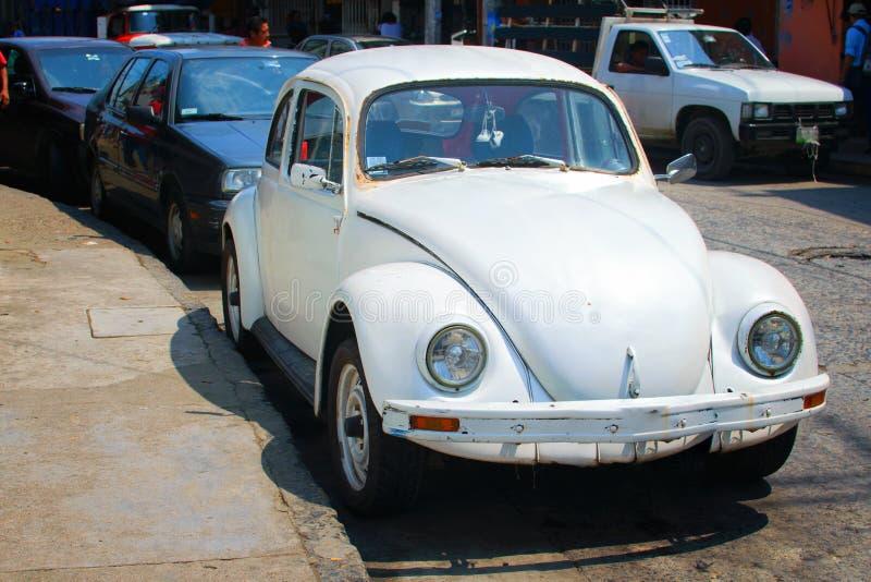 Volkswagen i Mexico royaltyfria foton