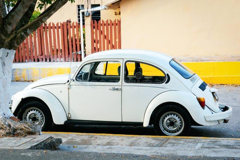 Volkswagen i Mexico royaltyfri fotografi