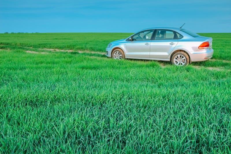 Volkswagen Polo Vento i ett lantligt fält med grönt gräs Dobrush royaltyfria foton