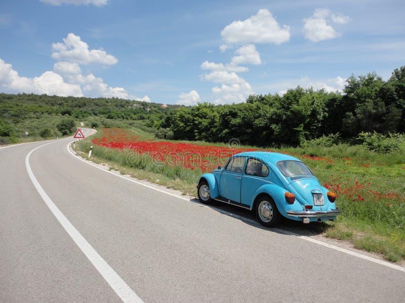 Volkswagen-Wanze und -Popkornmaschinen lizenzfreie stockfotos