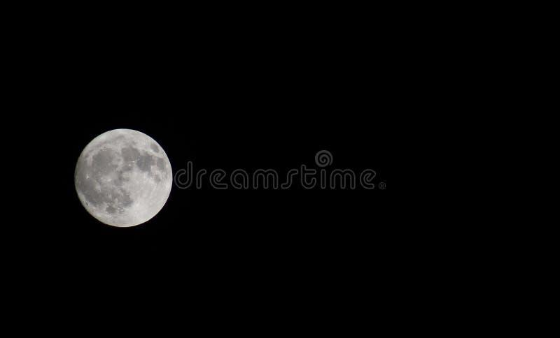 Voll Mond-auf dem Linkhintergrund stockbild
