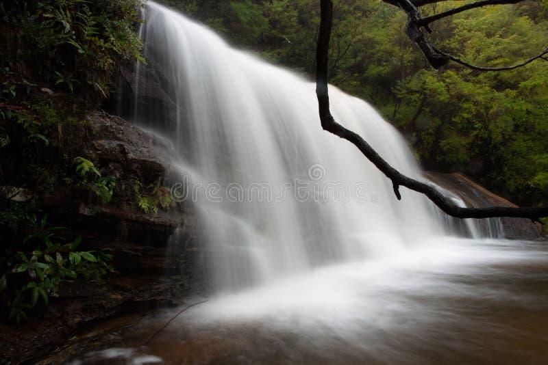 Volle flüssige Kaskaden in Wentworth Falls lizenzfreies stockbild