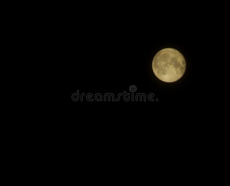 Download Volle maan stock afbeelding. Afbeelding bestaande uit volledig - 29753