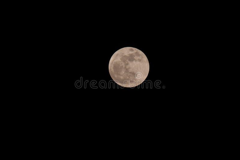Volle maan stock foto's
