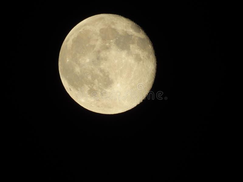 Volle maan in de nacht stock foto