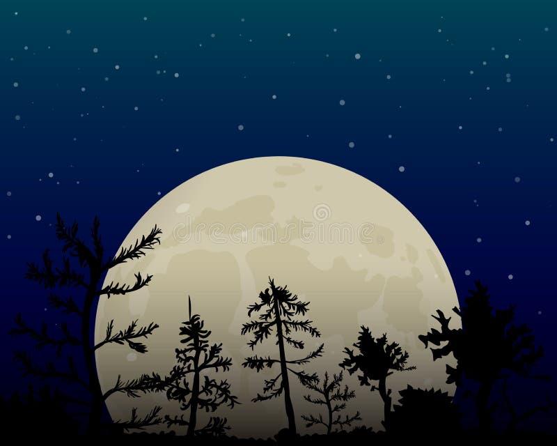 Volle maan in de nachthemel royalty-vrije illustratie