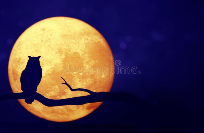 Volle maan in de nachthemel royalty-vrije stock afbeeldingen