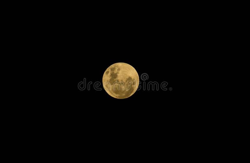 Volle maan in duidelijke hemel stock foto's
