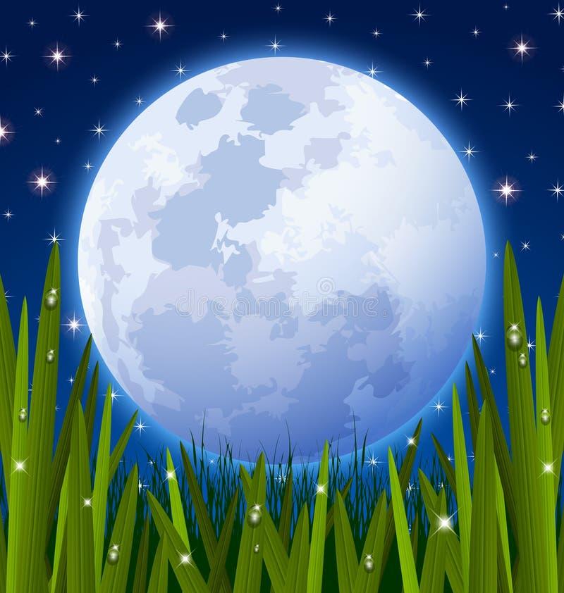 De weide van de volle maan en van het gras royalty-vrije illustratie