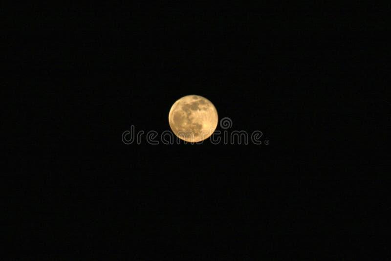 Volle maan met een zwarte hemel royalty-vrije stock afbeelding