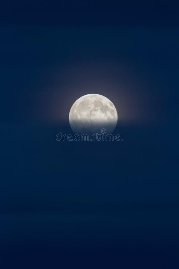 Volle maan op donkerblauwe hemel stock foto