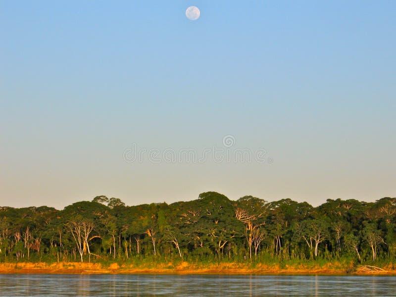 Volle maan over Amazonië royalty-vrije stock foto's