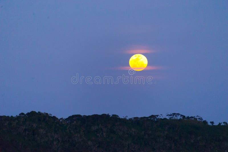 Volle maan over ruwenzoribergen royalty-vrije stock afbeeldingen