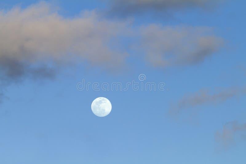 Volle maan in schemeringtijd in de duidelijke blauwe hemel met sommige lichtgrijze wolken royalty-vrije stock afbeelding