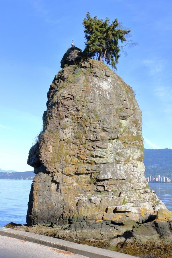 Volle Vertikale von Siwash-Felsen stockbilder