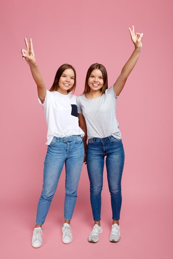 Volledig lenghbeeld van het charmeren van twee jonge tweelingzusters met mooie glimlach met handen die vredesgebaar over roze ton stock foto's