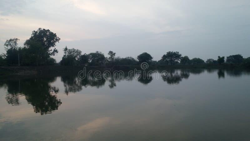 Volledig nuture in het dorp van India chhattisgarh stock fotografie