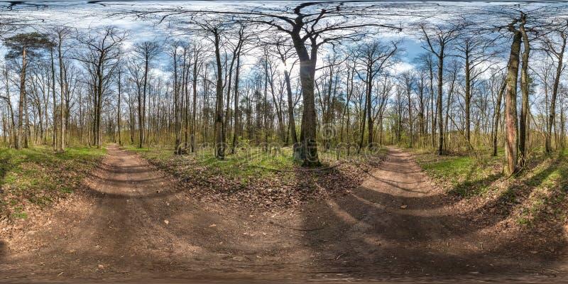 Volledig sferisch hdripanorama 360 van de hoekgraden mening op grint de voetvoetpad en weg van de fietssteeg in pinery bos dichtb royalty-vrije stock fotografie