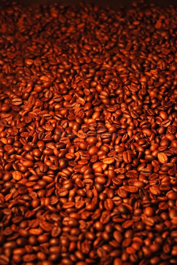 Volledige koffieboon stock foto's